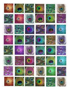 peacock feather patterns clip art collage by VellasCollageSheets, $1.99: