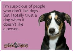 I live by this. A dog knows instinctively if a person is dodgy in some way. Over many years I have given people the benefit of the doubt, but always the dog's judgement has turned out right. Believe me it's true. They have a sense that can pick up on certain things. Just like the fact that their sense of smell is 6,000 times more sensitive than ours.