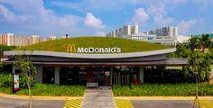 シンガポールのマクドナルドは野生動物も住むことができる?【arc】 #techosverdes