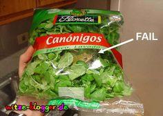 Der neue Frosch Salat