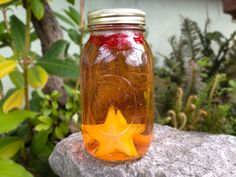Starfruit is a fantastically fun fruit to add to any infused water recipe. Not only is it a powerhouse of Vitamin C and A, but starfruit is also easy to work with and does not. Star Fruit Recipes, Fruit Water Recipes, Infused Water Recipes, Drink Recipes, Vegan Recipes, Strawberry Infused Water, Star Food, Best Fruits, Vegetable Drinks
