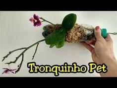 Tronquinho Garrafa Pet para orquídea (Resultado) | Andréa e suas orquídeas - YouTube