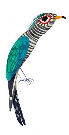 Brendan Wenzel: Wildlife of Vietnam series