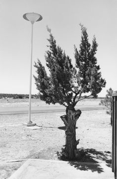 Henry Wessel, New Mexico, 1969