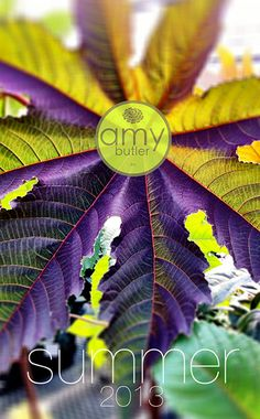 Amy Butler Design, Awesome site for free patterns and design ideas.