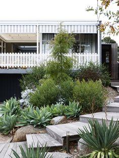 Sam's front garden. Garden sculpture by Joost, garden design by Grantham Clayford and wooden pathway by J B Elliot. Photo – Eve Wilson. Prod...