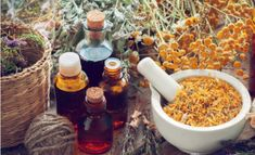 Photos Tincture bottles, mortar of dried marigold flowers and healing herbs on wooden board. Herbal medicin by chamillewhite Herbal Tinctures, Herbalism, Ayurveda, African Herbs, Propolis, Healing Herbs, Alternative Medicine, Herbal Medicine, Herbal Remedies