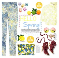 """No 293:Hello Spring"" by lovepastel ❤ liked on Polyvore featuring Erdem, Christopher Kane, Derek Lam, River Island, Revo and Anja"