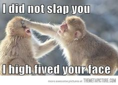 I didn't slap you…