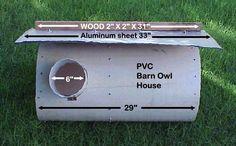 Barn owl house plans