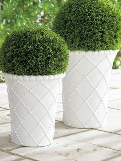 Our set of two Katie Planters features a latticework of raised dot detailing, for just a touch of texture. In a sleek, vertical silhouette, they look great placed together, or among other planters for a dimensional high-low landscape.