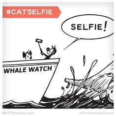 Share your adorable #CatSelfie pics with us! #cats