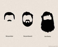 After Movember (or no-shave November) is over, Decembeard and Januhairy are on the way! Moustaches, No Shave November, The Mighty Boosh, Nick Offerman, Tastefully Offensive, Epic Beard, Beard Love, Movember, Beard No Mustache