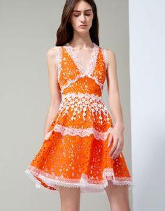 Alexis Bridget Lace Dress in Tangerine | SWANK