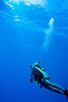 Scuba Dive at the Great Barrier Reef in Australia - http://www.reeftrip.com/cairns/scuba_diving.htm
