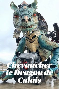 Panorama, France, Dragons, Lion Sculpture, Statue, Movie Posters, Ideas, Nord Pas De Calais, Tops