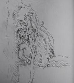 November 2013 Pencil sketching at Skansen, Stockholm. Sloths #sketchbook