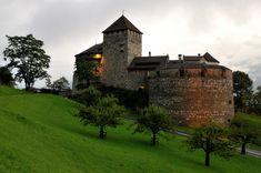 Vaduz Castle home of Liechtenstein's Princely Family [2048 x 1360] [OC]. wallpaper/ background for iPad mini/ air/ 2 / pro/ laptop @dquocbuu