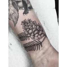 pine cone tattoo design - Google Search