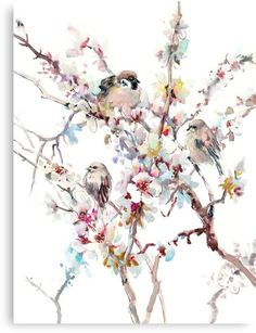 Birds and Flowers, spring songbird art, home decor • Millions of unique designs by independent artists. Find your thing. Apricot Blossom, Apricot Tree, Space Gallery, Stretched Canvas Prints, Giclee Print, Art Print, Wall Prints, Lovers Art, Framed Artwork