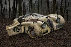 These seemingly abandoned vintage cars photographed in a forest feature historic racing cars and rusting vehicles bearing the distinctive Iron Cross.