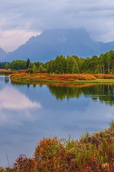 Oxbow Bend at Dawn -