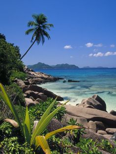 Saw a house hunters international on Seychelles. Wouldn't mind living here at all