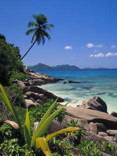 Tropical Beach, La Digue Island, Seychelles by Angelo Cavalli