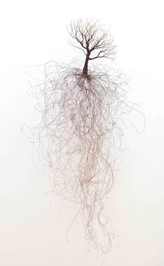 Shane Pennington / Love You Forever, copper wire sculpture, x in. - Shane Pennington / Love You Forever, copper wire sculpture, x in. Abstract Sculpture, Sculpture Art, Sculptures Sur Fil, Wire Sculptures, Berlin Art, Arte Obscura, Installation Art, Art Inspo, Art Drawings