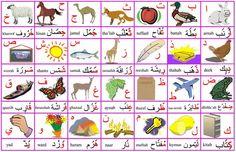 Arabo per principianti: la prima cosa da imparare sono i suoni ed i segni della lingua. Buono studio!