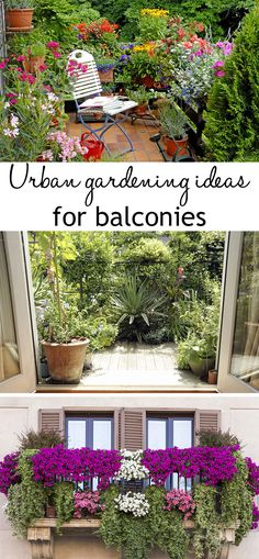 gardening ideas: How to grow plants without a garden Amazing balcony garden ideas, from a floral oasis to a tropical paradise!Amazing balcony garden ideas, from a floral oasis to a tropical paradise! Apartment Balcony Garden, Apartment Plants, Balcony Plants, Terrace Garden, Garden Beds, Indoor Plants, Balcony Gardening, Garden Oasis, Small Balcony Garden