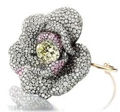 lily safra jewelry - Google Search