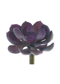 "Soft Latex Fake Succulent Pick in Purple 5"" Bloom x 5"" Tall"