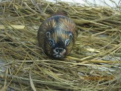 Hand Painted Beaver Rock/ Painted Rock/ Stone Art/ Hand Painted/ Home Decor/ Door Stop/ Paper Weight/ Hand Painted Gift