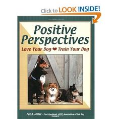 For puppies - prevent and solve behavior problems. Perfect for novice pet owners Pet Trainer, Dog Runs, Training Your Dog, Dog Owners, Best Dogs, Perspective, Love You, Positivity, Puppies