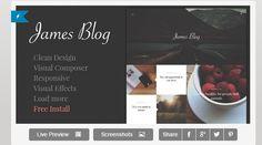 30 Best Responsive Magazine WordPress Theme