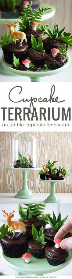 Learn how to make this nature-inspired Cupcake Terrarium with a step-by-step tutorial. A little edible landscape filled with leaves, petite mushrooms and novelty deer. By Cakegirls for TheCakeBlog.com.