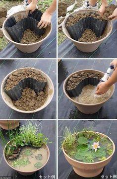 Créez un mini bassin en 20 minutes #jardin #jardinage #pots