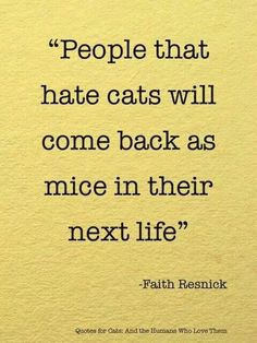 People that hate cats...
