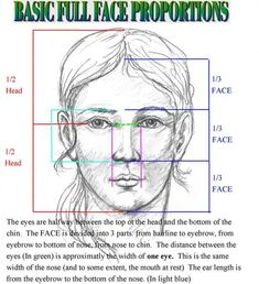 how to draw human face proportions Pencil Art, Pencil Drawings, Art Drawings, Drawing Faces, Drawing Drawing, Basic Drawing, Human Drawing, Drawing Hair, Horse Drawings