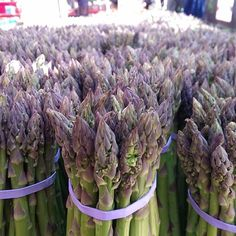 Lovely #asparagus at Abingdon Square Park in #Manhattan #farmersmarketnyc
