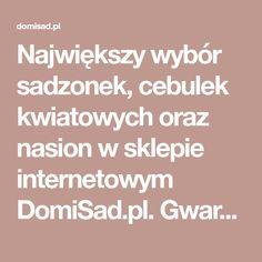 Największy wybór sadzonek, cebulek kwiatowych oraz nasion w sklepie internetowym DomiSad.pl. Gwarantujemy rośliny najwyższej jakości w super niskich cenach. Kupuj tylko w DomiSad.pl Zadzwoń 68 415 20 40