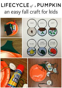 Life Cycle of a Pumpkin Craft - pinned by – Please Visit for all our ped therapy, school & special ed pins Fall Activities For Toddlers, Autumn Activities, Science Activities, Classroom Activities, Therapy Activities, Therapy Ideas, Pumpkin Crafts, A Pumpkin, Preschool Crafts