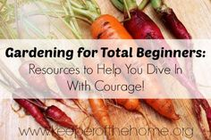 Gardening Tips for Beginners: Resources to Help You Dive Into Gardening With Courage!