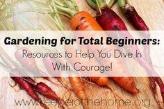 Gardening for total beginners