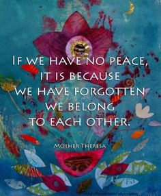 """If we have no peace, it is because we have forgotten we belong to each other."" -Mother Theresa *We are all connected to everyone and everything in this universe, including the divine- we are all one. That's a powerful reminder. The Words, Cool Words, Great Quotes, Me Quotes, Inspirational Quotes, Peace Quotes, Unity Quotes, Motivational, Fabulous Quotes"
