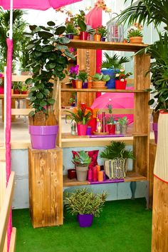 A combination of al the bright colors and different materials! #Candles #Orchids #Bromelia's #Plants