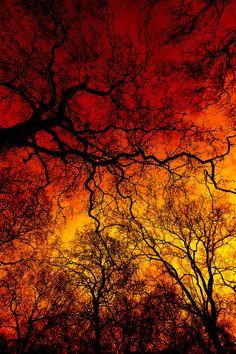sky fire...