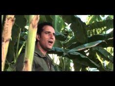 Rafet El Roman - Direniyorum - YouTube