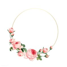 Blank round pink roses frame vector on white background | free image by rawpixel.com / busbus